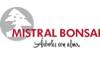 MistralBonsai_logo1